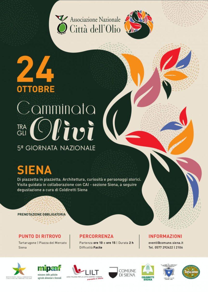 """Siena: """"Camminata fra gli olivi"""", la città valorizza l'eccellenzadell'olio"""